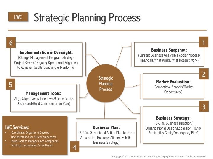 Strategy  Business Plan Development  Process Diagram  Lisa Woods
